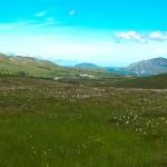 Glenvar-View
